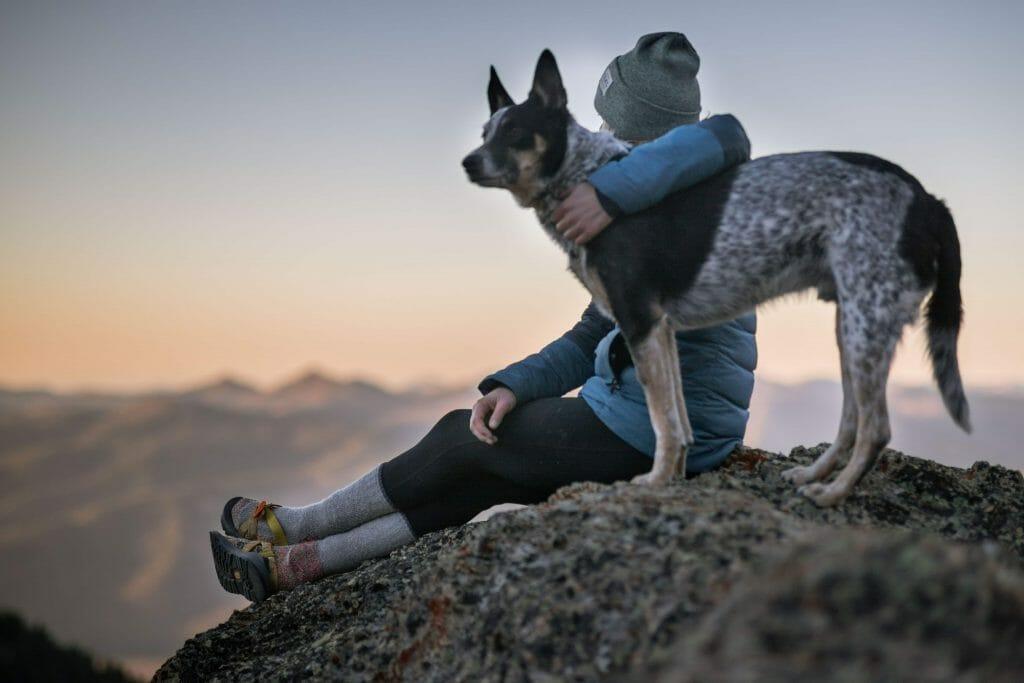 Människa och hund på berg