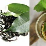 Grönt te: Därför är det bra för kropp och själ