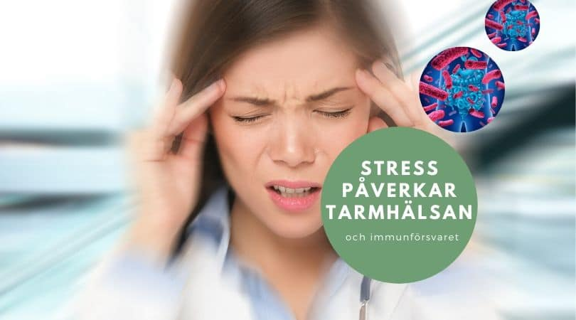 stress tarmflora blogg octean